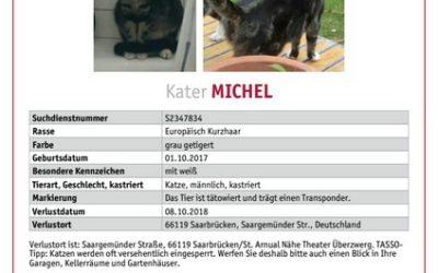 Michel wird in Saarbrücken vermißt